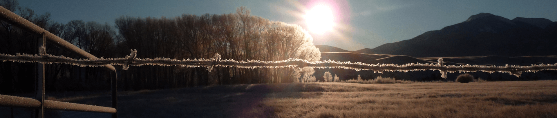 ranch wire fence with frost on it in Montana